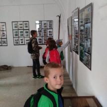 Muzeum (3)
